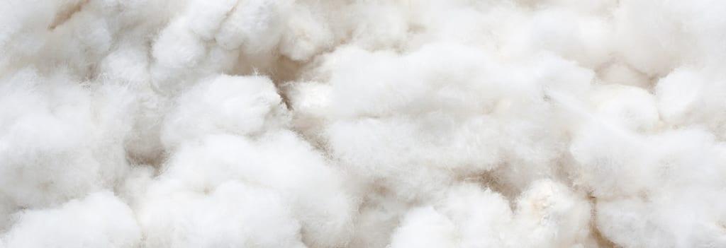 cotton fiber 4414141